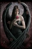 ANNE STOKES- ANGEL ROSE POSTCARD